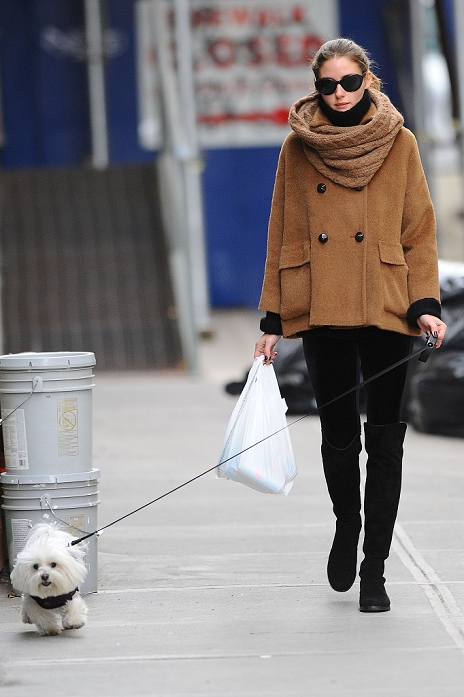 Olivia Palermo went shopping at a deli with her dog in Brooklyn, NY