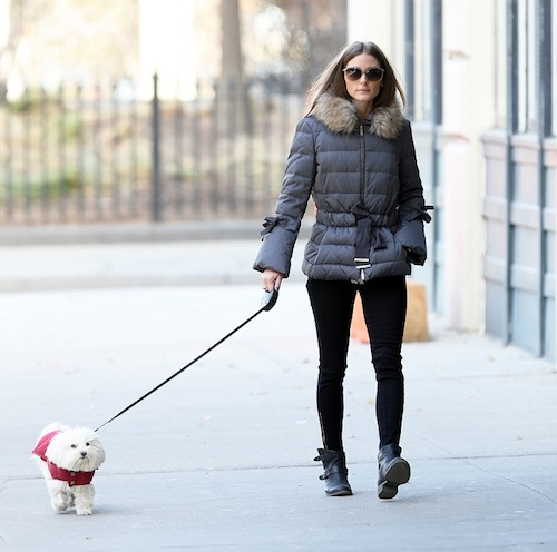 Olivia Palermo seen out with Mr Butler in Brooklyn, NYC