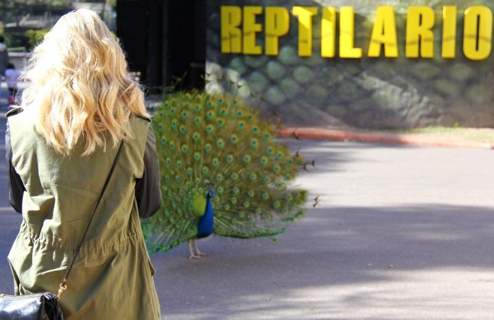 Mirella Buenos Aires zoo 1