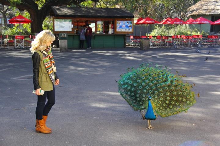 Mirella Buenos Aires zoo 4