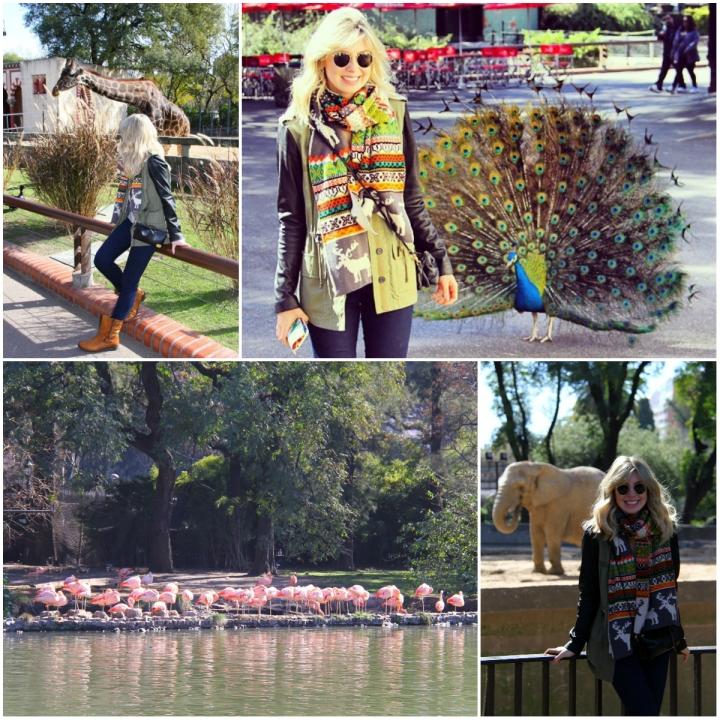 Zoo Mirella 2