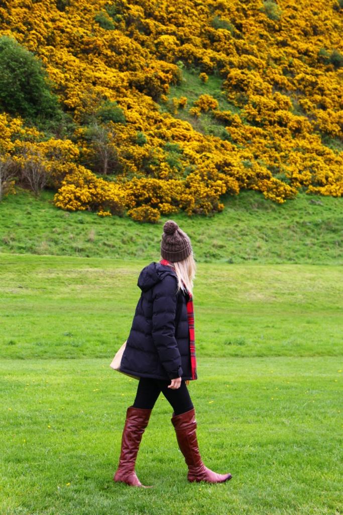 Mirella Edimburgo tartan 2
