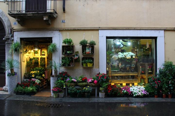 Verona Mirella 14