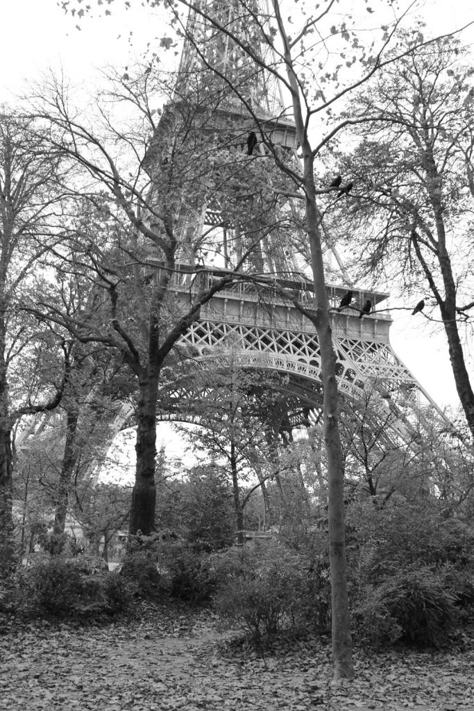 Mirella Paris 39